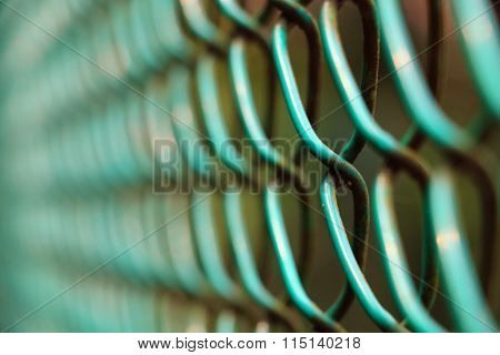 Green Wired Fence In Close Up