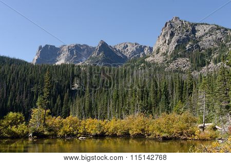 Brush And Pine Trees Along Fern Lake Horizontal