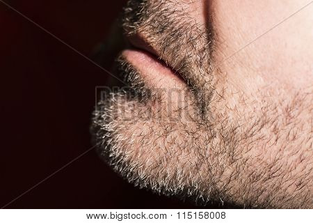 Close-up of mature man, low key
