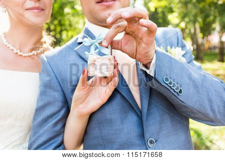 the lock in hands of newlyweds