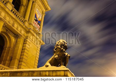 Monument Of Lion In Kaliningrad