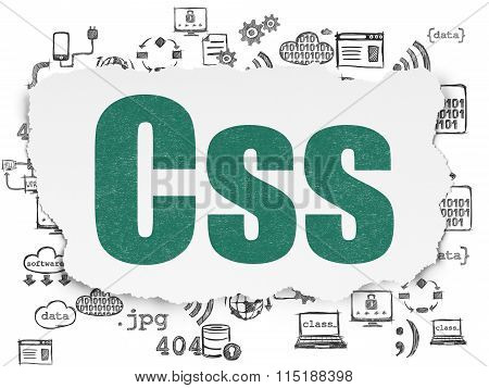 Software concept: Css on Torn Paper background