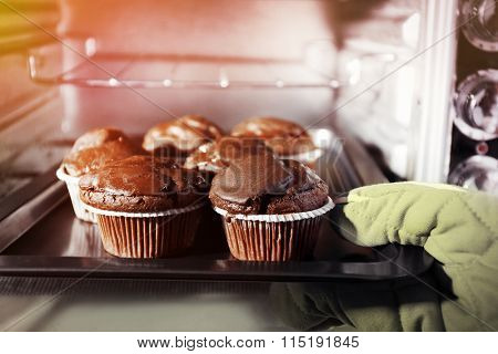 Housewife preparing chocolate cupcakes in oven, close up