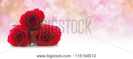 Three Beautiful Red Roses Website Header