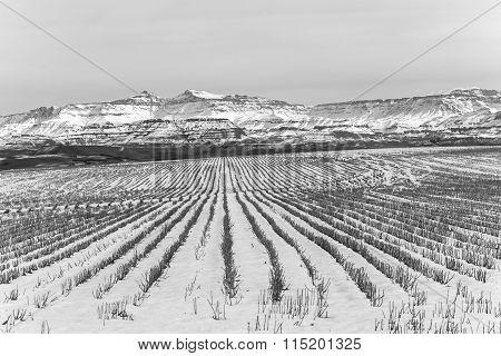 Mountains Farmlands Winter Vintage