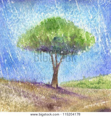 Tree under the rain - Watercolor