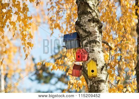 Bird Houses On The Tree