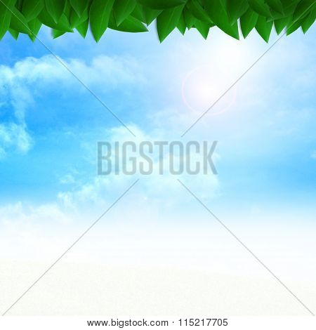 Fresh green leaves with blue sky background