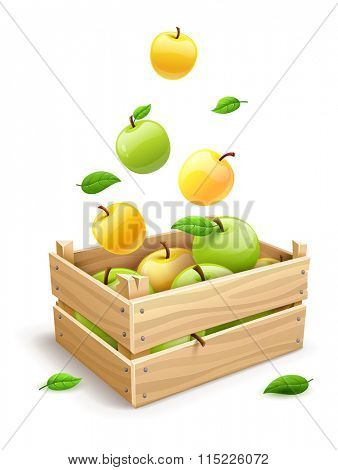 Ripe apple fruits falling into the wooden box. Isolated on white background.