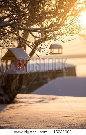 Close view of wooden bird's feeder in winter on sunny day