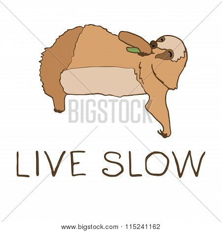 Vector illustration of cute eating sloth