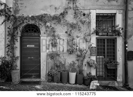 Nice front door with flowers in a pot in Roma, Italy in black and white.  Image taken from the street.