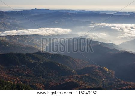 Mountain Valley And Forest Fog