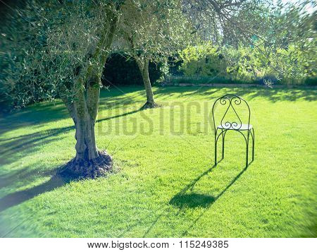 Empty Chair Waiting Grass