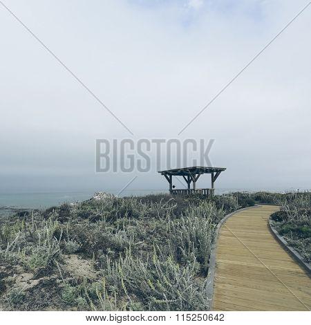 walkway to ocean, california, usa.
