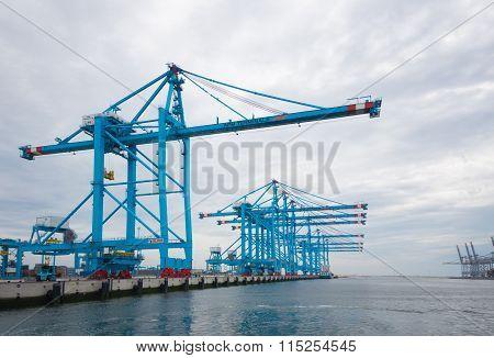 Rotterdam Harbor Cranes