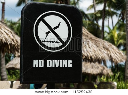 Sign NO DIVING