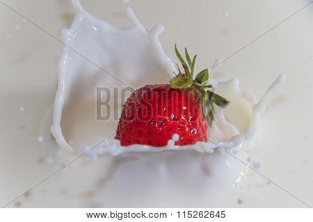 Strawberry Drop In The Milk With Splashing