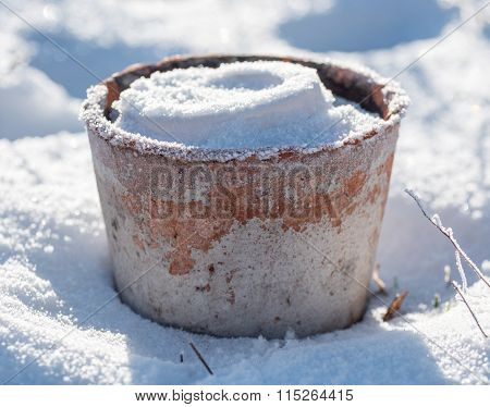 Flowerpot with Snow and Frost