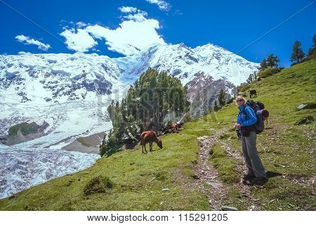 On the trail to Rakaposhi