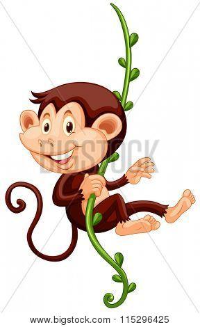 Little monkey climbing up the vine illustration