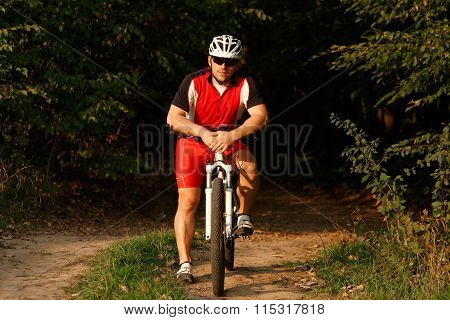 Rider on Mountain Bicycle it the forest