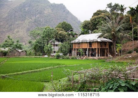 Traditional farmhouse in North Vietnam