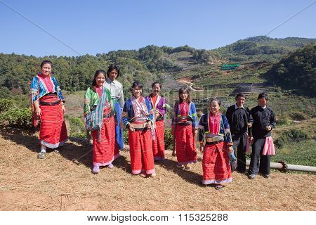 Chiangmai Thailand - Jan10 : Dara-ang Hill Tribe People Harvesting Tea Leaves From Tea Plantation Co