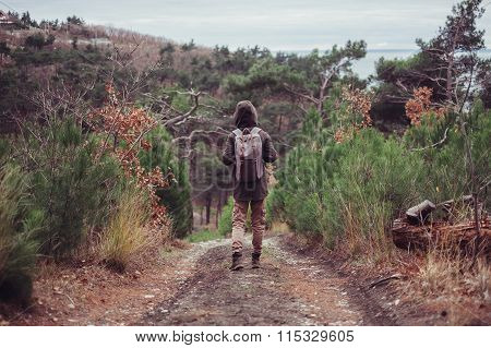 Hiker Walking On Path