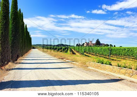 The Road Through The Vineyards To The Castle Against The Blue Sky Of Tuscany