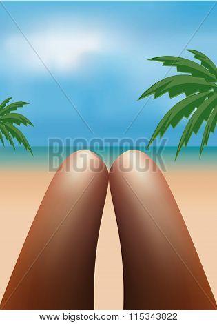 Young Woman Legs Sunbathing. Vector
