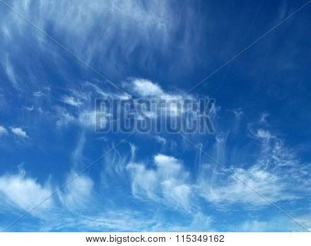Medusa clouds