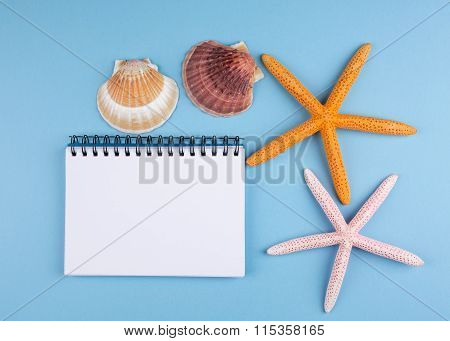 summer concept background with notebook and starfis