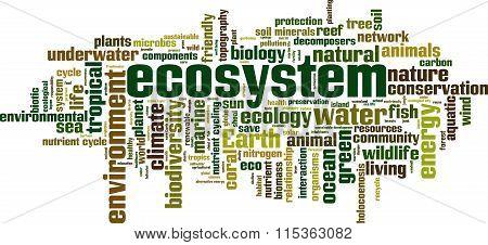Ecosystem Word Cloud