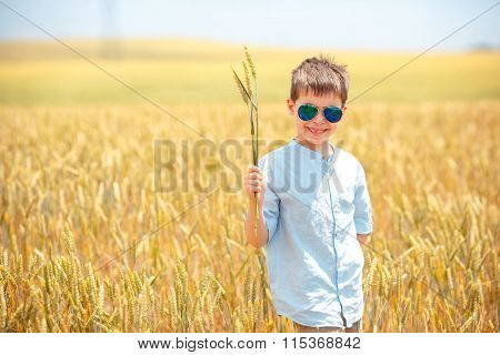 Cute little boy walking happily in wheat field