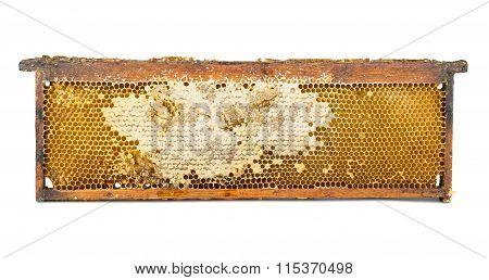Honeycomb Wooden Frame