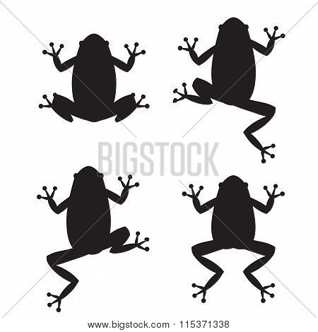 Set Of Frog Silhouettes On White Background
