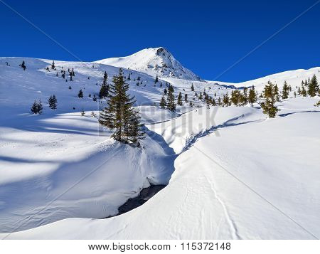 Snowy Mountain Pick