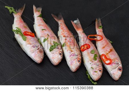 Red Mullet Fish On Black