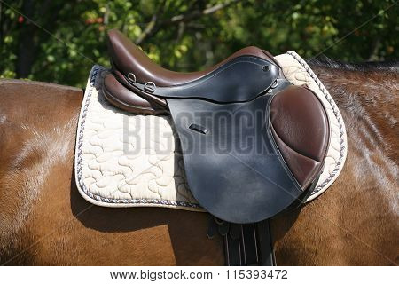Black And Brown Leather Saddle On Back Of A Horse