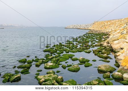 Rocks In Water Across Pontoon With City Behind. Rocks With Green Moss In Calm Water Across Seashore