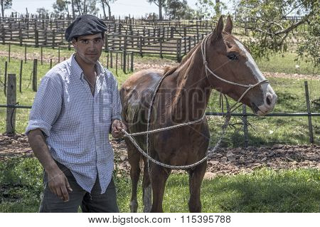 Gaucho Takes Care Of His Horse