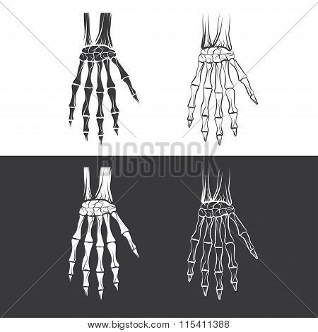 Set Of Skeleton Hands