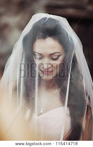 Sensual Beautiful Brunette Bride Smiling And Hiding Under Her Veil Outdoors