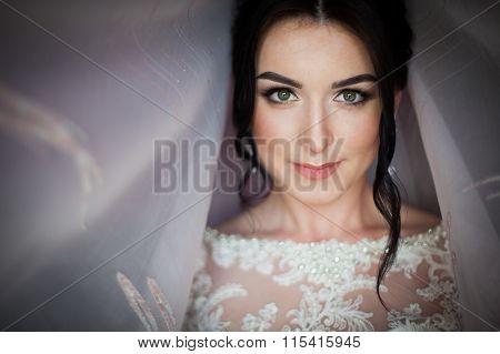 Closeup Shot Of An Elegant, Brunette Bride In Vintage White Dress Posing Under Veil Closeup