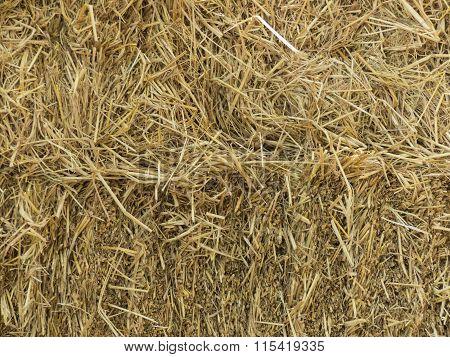 Yellow Straw pile