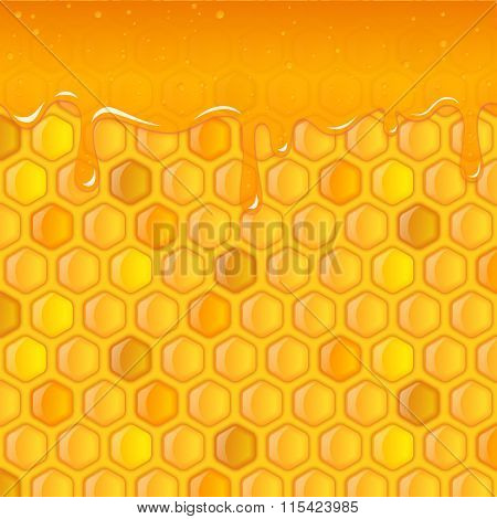 Honeycombs Background And Honey