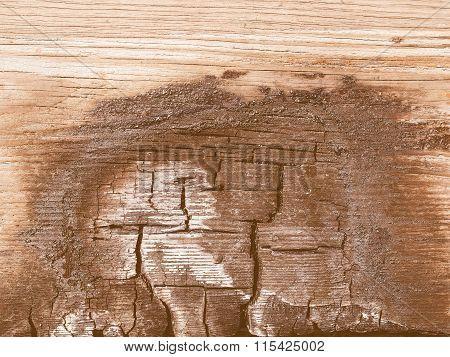 Burned Wood Vintage