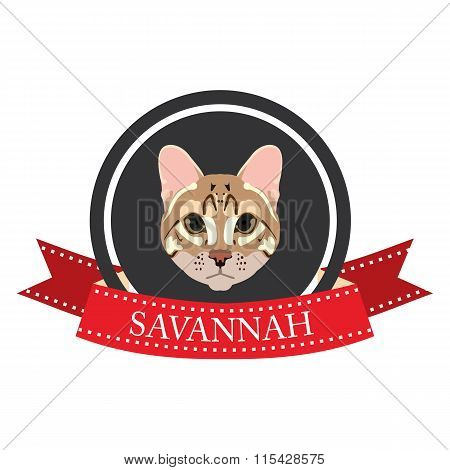 Flat Icon Pedigreed Cat Savannah