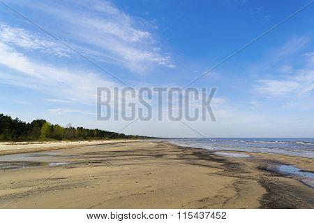 Seashore In Jurmala